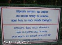 1271616_1000.jpg - 85kB