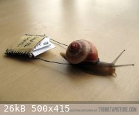 funny-snail-mail-carry-photo.jpg - 26kB