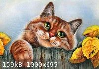 Webp.net-resizeimage.jpg - 159kB